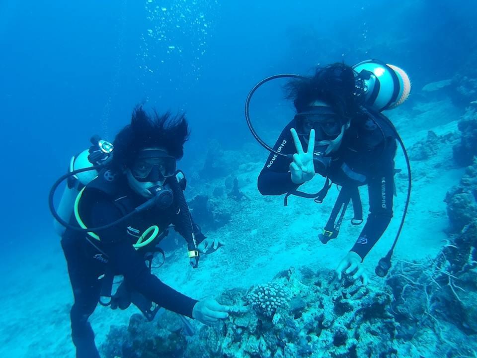 diving pulau menjangan2