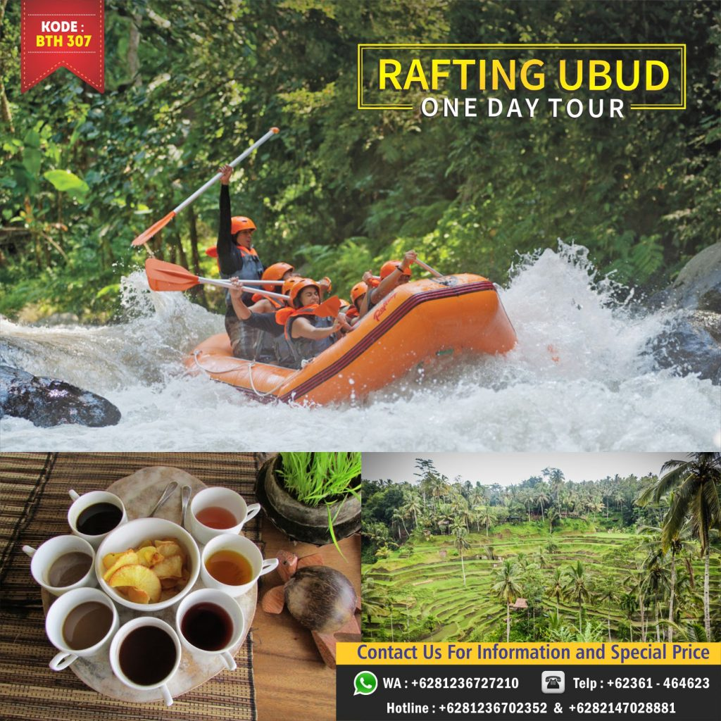 rafting one day tour