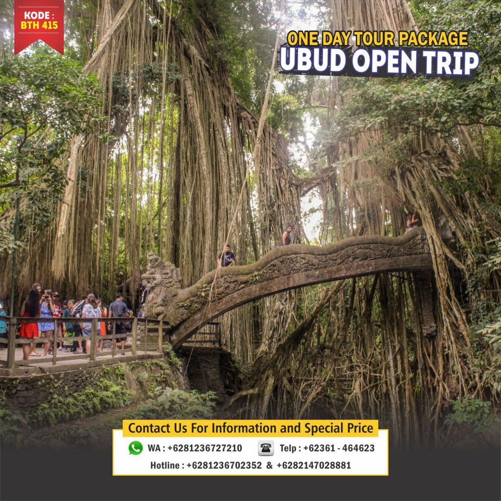 Ubud one day tour